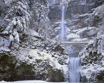 USA, Oregon, Columbia River Gorge National Scenic Area von Danita Delimont