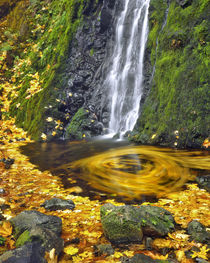 USA, Oregon, Columbia River Gorge National Scenic Area von Danita Delimont