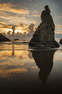 USA, Oregon, Bandon von Danita Delimont
