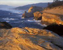 USA, Oregon, Three Capes Scenic Route, Cape Kiwanda State Na... by Danita Delimont