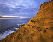 USA, Oregon, Oregon Coast near Lincoln City, Cape Kiwanda St... by Danita Delimont