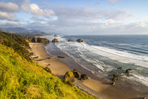 Crescent Beach at Ecola State Park in Cannon Beach, Oregon, USA von Danita Delimont