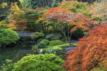 Japanese Gardens von Danita Delimont