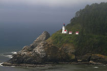 Heceta Head Light is a lighthouse located on the Oregon Coas... by Danita Delimont