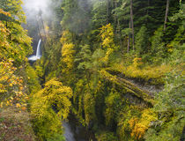 USA, Oregon by Danita Delimont