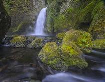Wahclella Falls, Columbia River Gorge by Danita Delimont