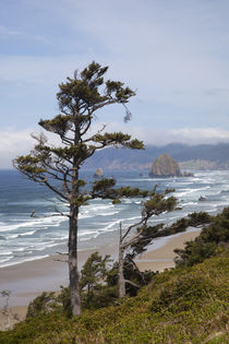 OR, Oregon Coast, view of Haystack Rock and Cannon Beach, fr... von Danita Delimont