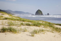 OR, Oregon Coast, Cannon Beach and Haystack Rock by Danita Delimont