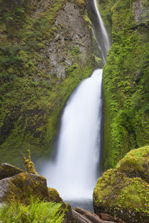 OR, Columbia River Gorge National Scenic Area, Wahclella Fal... von Danita Delimont