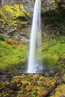 USA, Oregon, Columbia River Gorge, Elowah Falls, 289 feet by Danita Delimont