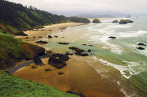 Crescent Beach from Ecola State Park, Oregon, USA by Danita Delimont