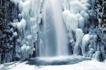 Multnomah Falls in Winter: Columbia Gorge, Oregon, USA by Danita Delimont