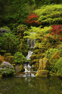 Spring, Portland Japanese Garden, Portland, Oregon, USA von Danita Delimont