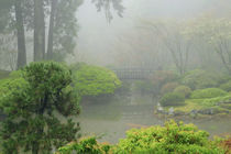 Portland Japanese Garden Fogged In: Portland, Oregon USA by Danita Delimont