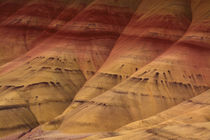 Close-up, Painted Hills, Mitchell, Oregon, USA by Danita Delimont