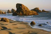 Sunset, Meyers Beach, Oregon, USA by Danita Delimont