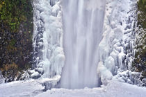 Winter at Multnomah Falls in Columbia Gorge, Oregon, USA. by Danita Delimont