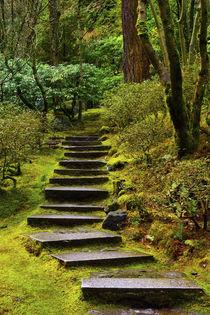 upward steps, wild garden, Portland Japanese Garden, Portlan... von Danita Delimont