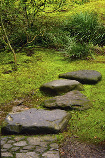 Stepping Stones, Mosaic, Wild Garden, Portland Japanese Gard... von Danita Delimont