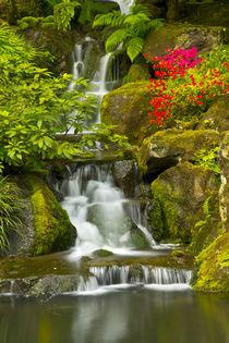 Heavenly Falls, Strolling Garden, Portland Japanese Garden, ... von Danita Delimont