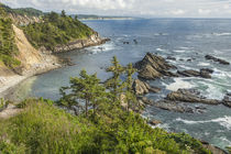South Cove at low tide as seen from Cape Arago. by Danita Delimont