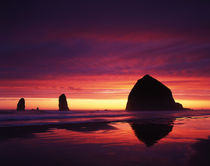 USA, Oregon, Oregon Coast, View of Haystack Rock on Cannon b... by Danita Delimont