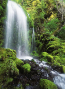 USA, Oregon, Colombia, View of waterfall at Mt Hood National Forest by Danita Delimont