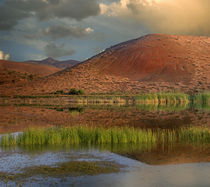Painted Cove at Painted Hills, John Day Fossil Beds National... by Danita Delimont