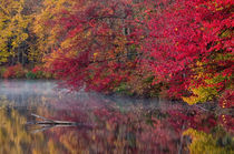 USA, Pennsylvania, Dingmans Ferry, Hidden Lake by Danita Delimont