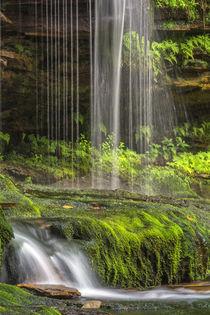 USA, Pennsylvania, Benton by Danita Delimont
