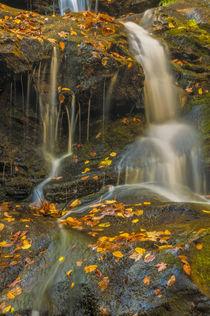 USA, Pennsylvania, Delaware Water gap National Recreational Area von Danita Delimont