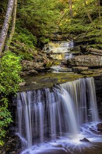 USA, Pennsylvania, Benton, Ricketts Glen State Park von Danita Delimont