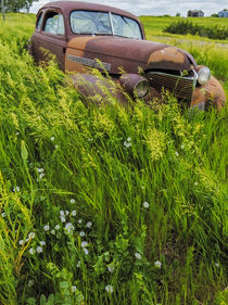 Rusty old vehicles in the ghost town of Okaton, South Dakota, USA von Danita Delimont