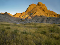 Eroded butte peak, Badlands National Park, South Dakota von Danita Delimont