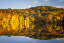 Autumn color at Radnor Lake, Nashville, Tennessee, USA. von Danita Delimont