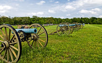 The Sights of the Shiloh Military Park in Shiloh Tennessee, USA. by Danita Delimont