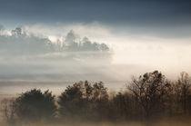 USA, North America, Tennessee, Fog in Cades Cove in the Smok... von Danita Delimont