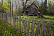 USA, Tennessee, Cabin in Cades Cove. by Danita Delimont
