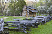 John Oliver Cabin in spring, Cades Cove area, Great Smoky Mo... by Danita Delimont