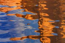 USA, Utah, Glen Canyon National Recreation Area von Danita Delimont