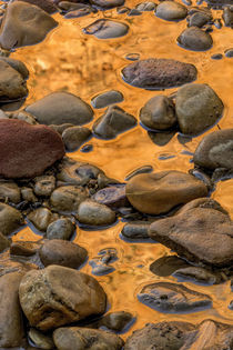 USA, Utah, Zion National Park von Danita Delimont