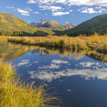 USA, Utah, Wasatch Cache National Forest by Danita Delimont