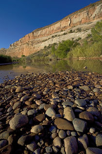 USA, Utah, Dolores River, gravel bar by Danita Delimont