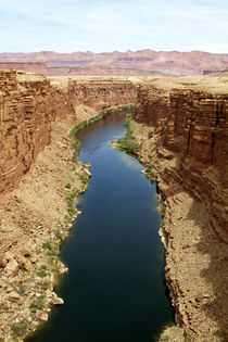 Colorado River, Glen Canyon, Arizona and Utah, USA. von Danita Delimont