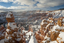 Bryce Canyon Amphitheater, Bryce Canyon National Park in sno... by Danita Delimont