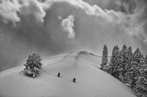 Backcountry Ski Climbers in fresh powder, view near Beartrap... by Danita Delimont