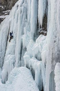 Ice climber ascending Stewart Falls outside of Provo, Utah n... by Danita Delimont