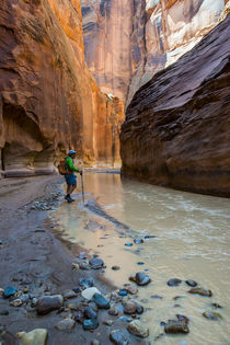 Howie hiking in the Paria Canyon, Vermillion Cliffs Wilderne... von Danita Delimont