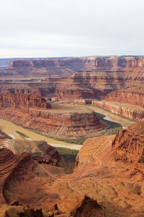 USA, Utah, Canyonlands National Park, Island in the Sky, Goo... von Danita Delimont