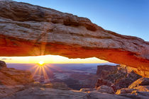 USA, Utah, Canyonlands National Park, Island in the Sky, Mes... von Danita Delimont